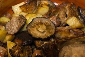 funghi-cotti-1